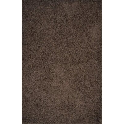 Alpha Brown Area Rug Rug Size: 53 x 72