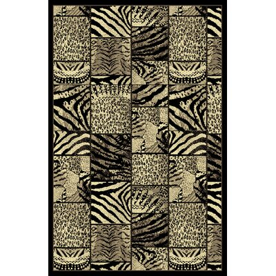 Doreen Black Area Rug Rug Size: 53 x 72