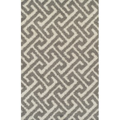 Akil Gray Area Rug Rug Size: 711 x 910