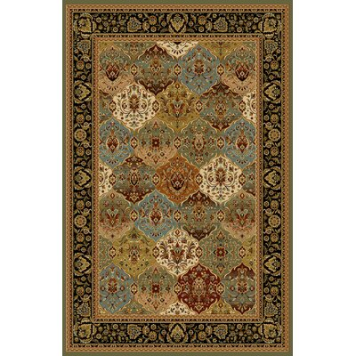 Altitude Sage Green Area Rug Rug Size: 53 x 72