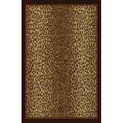 Dixie Brown/Beige Area Rug Rug Size: 711 x 910