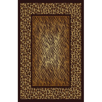 Dena Brown Area Rug Rug Size: 53 x 72