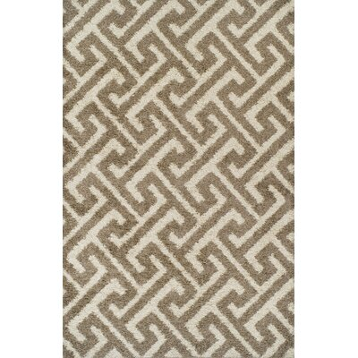 Akil Brown Area Rug Rug Size: 711 x 910