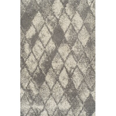 Milagro Gray Area Rug Rug Size: 53 x 72