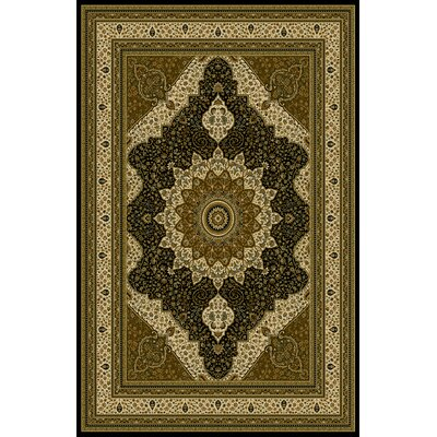 Andress Black/Brown Area Rug Rug Size: Runner 27 x 91