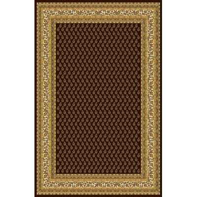 Alyn Dark Brown Area Rug Rug Size: 53 x 72