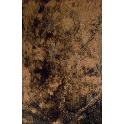 Mohammed Brown Area Rug Rug Size: 53 x 72