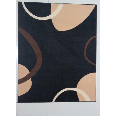 Schkyra Black Area Rug Rug Size: 711 x 910