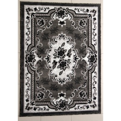 Peterson Dark Gray Area Rug Rug Size: 2 x 3