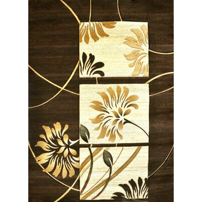Hayward Brown Area Rug Rug Size: 53 x 72
