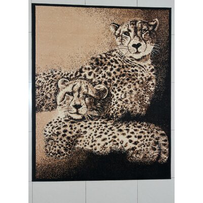New Smyrna Black Area Rug Rug Size: Runner 2 x 72