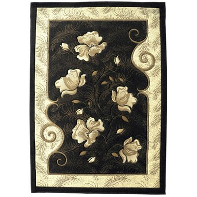 Abrams Brown Area Rug Rug Size: Rectangle 53 x 72
