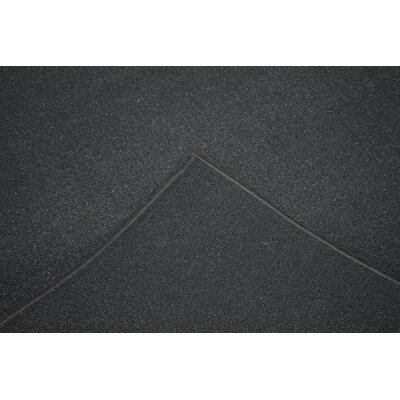 Miers Black Area Rug Rug Size: Runner 2 x 72