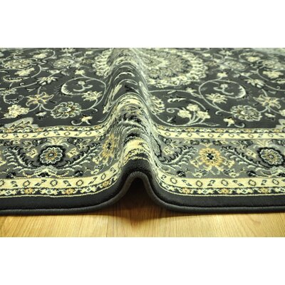 Zoelle Traditional Black/Ivory Area Rug Rug Size: 711 x 910