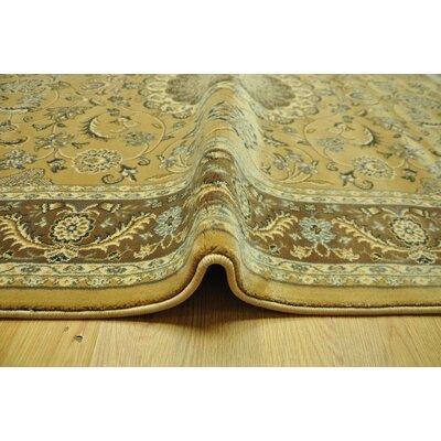 Charlenne Beige/Brown Oriental Area Rug Rug Size: Runner 27 x 91