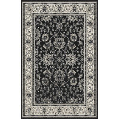 Amabella Black Area Rug Rug Size: Rectangle 53 x 72