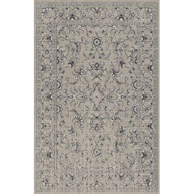 Zoelle Gray Area Rug Rug Size: Rectangle 53 x 72