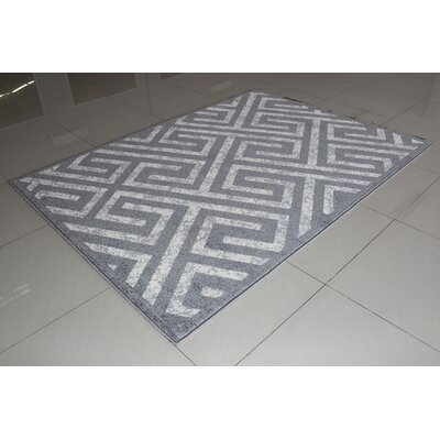 Rosenberry Contemporary Gray Area Rug Rug Size: 53 x 72