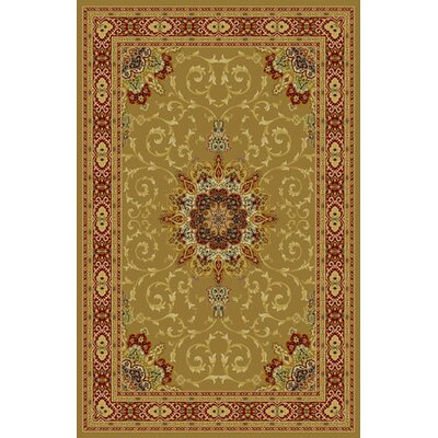 Bratcher Brown Area Rug Rug Size: 53 x 72