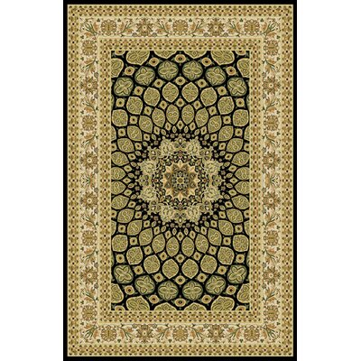 Woodrick Black Area Rug Rug Size: 711 x 910