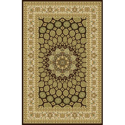 Rosalin Brown Area Rug Rug Size: 53 x 72