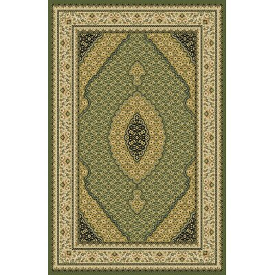 Gauger Green Area Rug Rug Size: 53 x 72