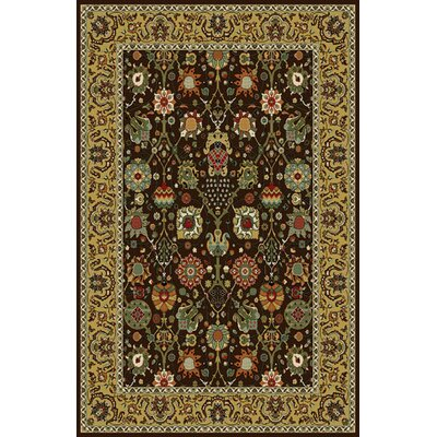 Gillmore Dark Brown Area Rug Rug Size: 10 x 13