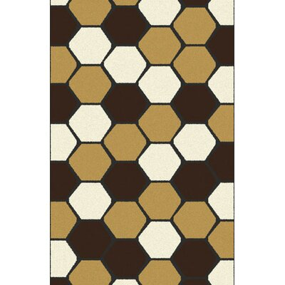 Bonetti Brown Area Rug Rug Size: 53 x 72