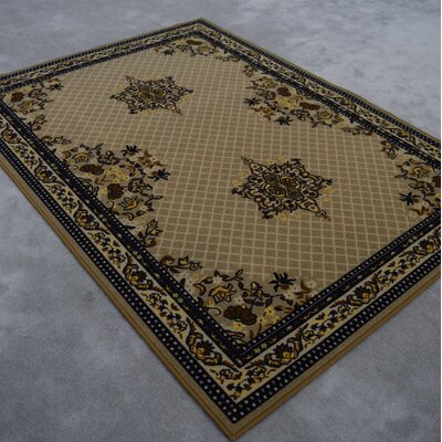 Kasselkus Brown Area Rug Rug Size: Runner 27 x 146