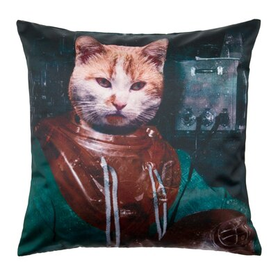 Antique Cat Pillow Cover