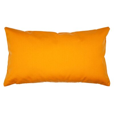 Lounge Pillow Cover Color: Light Orange