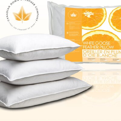 Canadian Feather Pillow Size: Standard