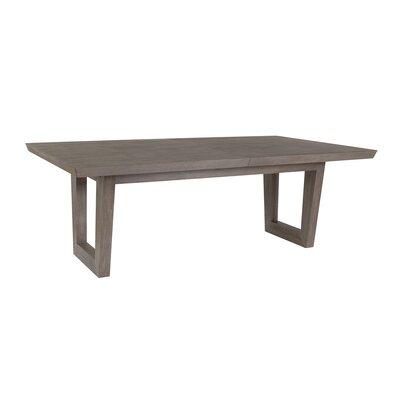 Brio Extendable Dining Table Color: Grigio