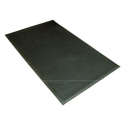Doormat Mat Size: 3 x 5