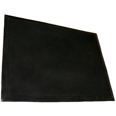 Outdoor Doormat Rug Size: 2 x 3