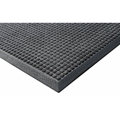 Kettner Doormat Mat Size: Rectangle 4 x 6, Color: Charcoal