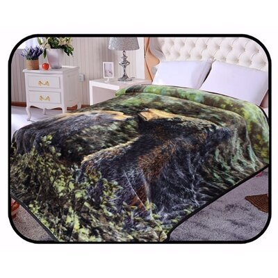 Hiyoko Safari Bear Animal Mink Blanket