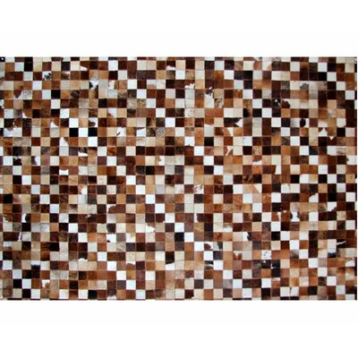 Brown Area Rug Rug Size: 56 x 76
