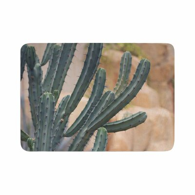 Ann Barnes Cactus Jungle II Photography Memory Foam Bath Rug Size: 0.5 H x 24 W x 36 D