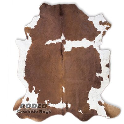 White/Brown Area Rug Rug Size: 6 x 8