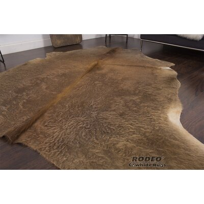 Rodeo Brown Area Rug Rug Size: 5 x 7