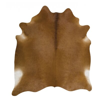 Brown Area Rug Rug Size: 5 x 6