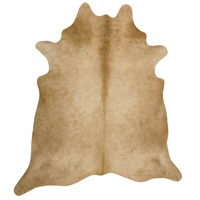 Rodeo Brown Area Rug Rug Size: 7 x 8