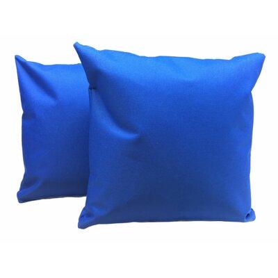 Indoor/Outdoor Throw Pillow ODBLPW