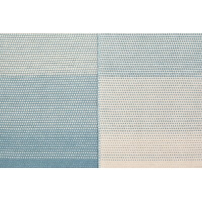 Ombre Stripe Oversized Throw Color: Light Blue/Ivory