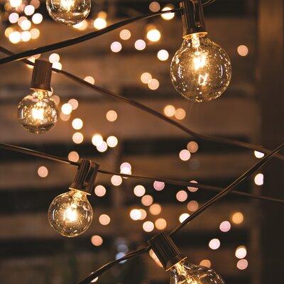 20-Light 19 ft. Globe String Lights