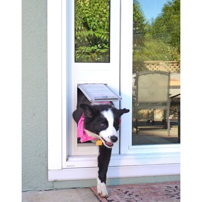 Endura Flap Quick Panel 3 Pet Door Flap Size: Medium, Color: White, Frame Size: 77.25 - 80.25
