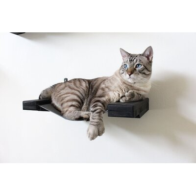 6 Handcrafted Cat Perch Color: Onyx/Charcoal