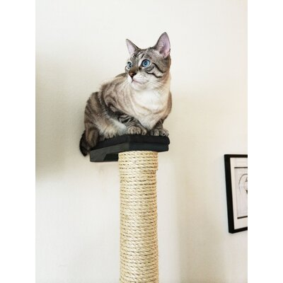 Vertical Sisal Scratching Post Color: Onyx/Charcoal