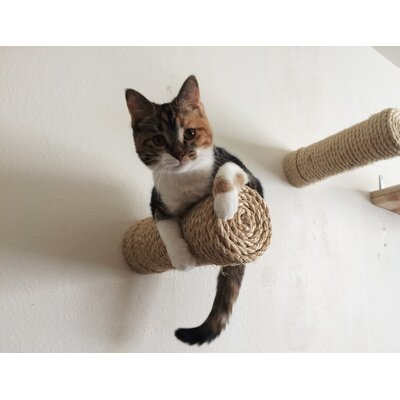 11 Floating Sisal Cat Perch